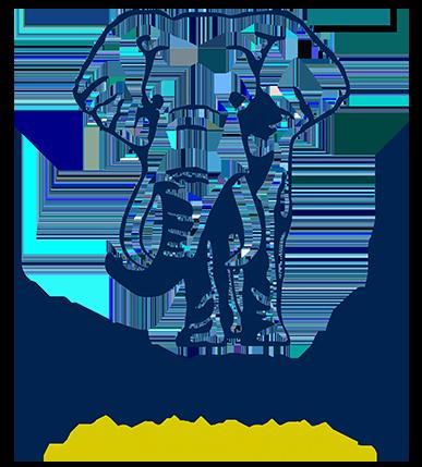 logo_big2 1